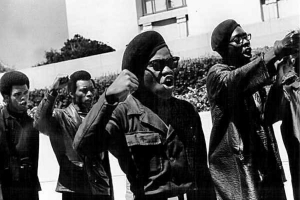 Seize the Power – The Black Panthers